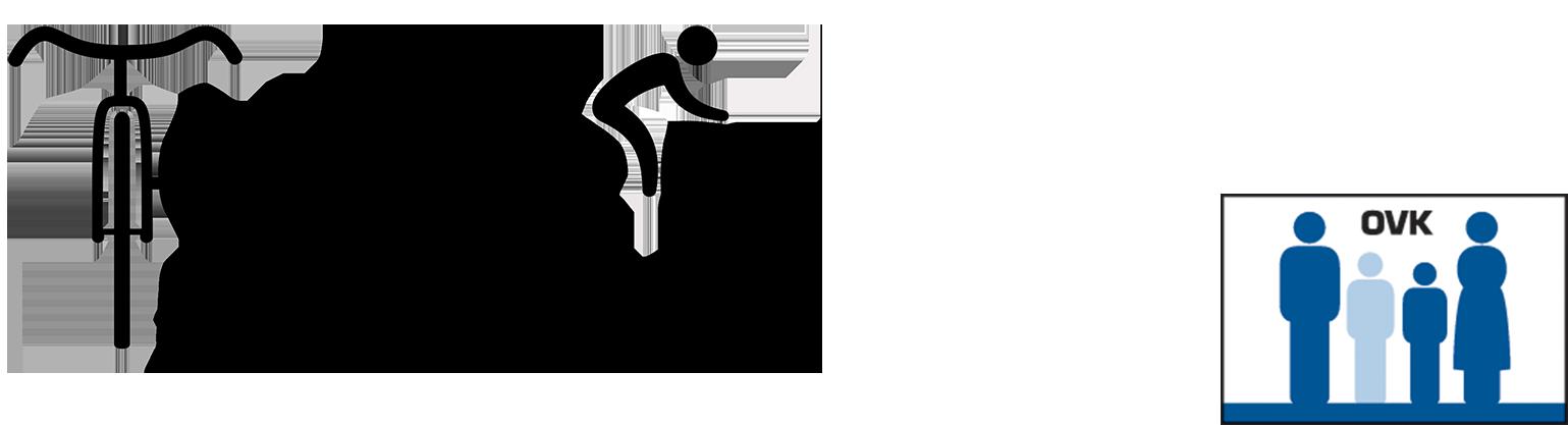 Logo Tournée Flandrienne